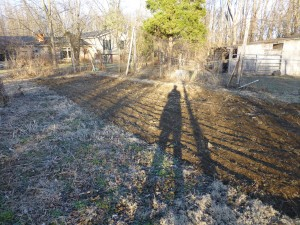 Tilled and ready to plant Potatoes and Early veggies
