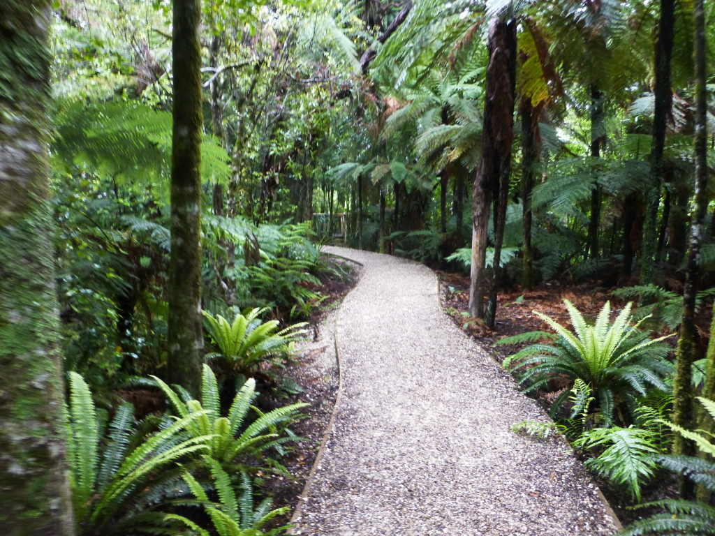 Waikoropupu Springs Walk