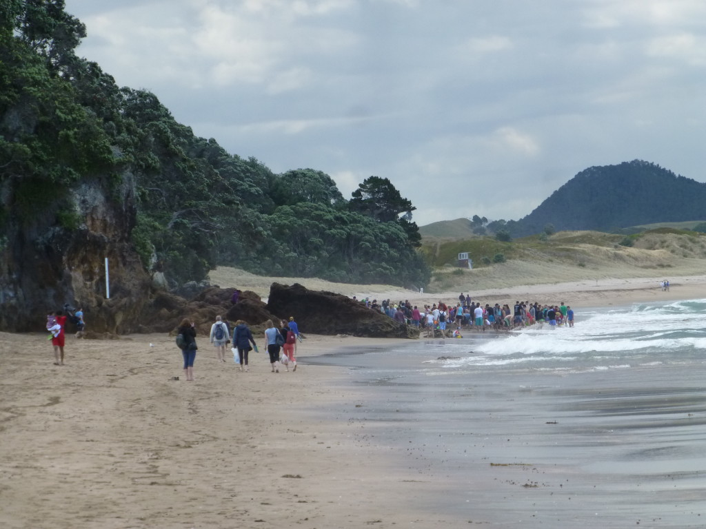 People With Shovels on Hot Water Beach