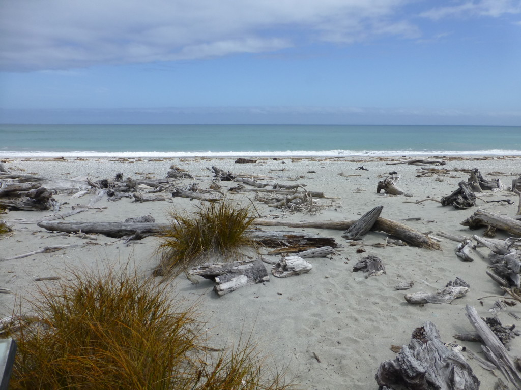 Tasman Sea at Tauperikaka Marine Reserve