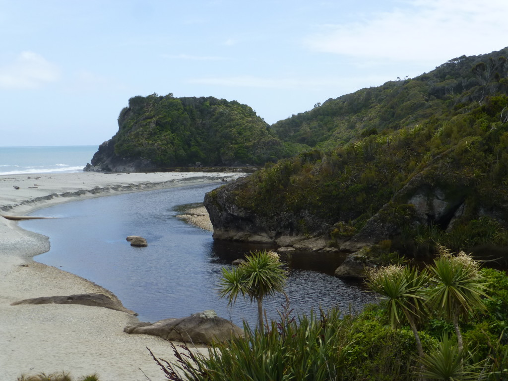 Ship Creek Meets the Tasman Sea