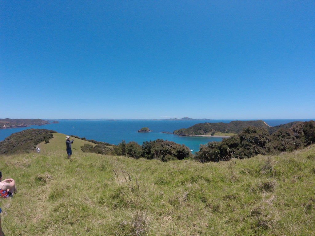 From the Island Hilltop