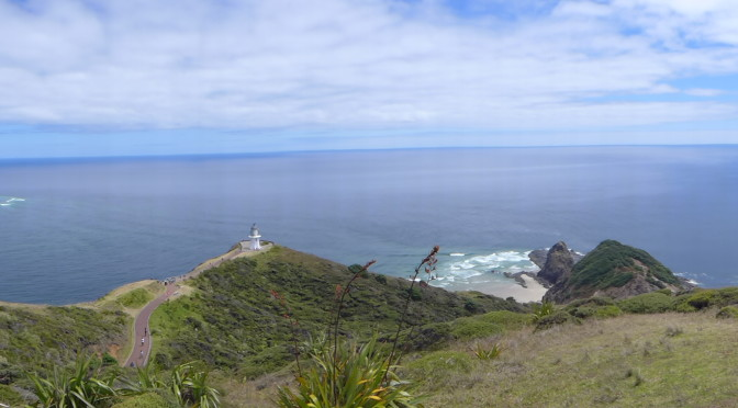 Cape Reinga and Hokianga-NZ Days 25-26
