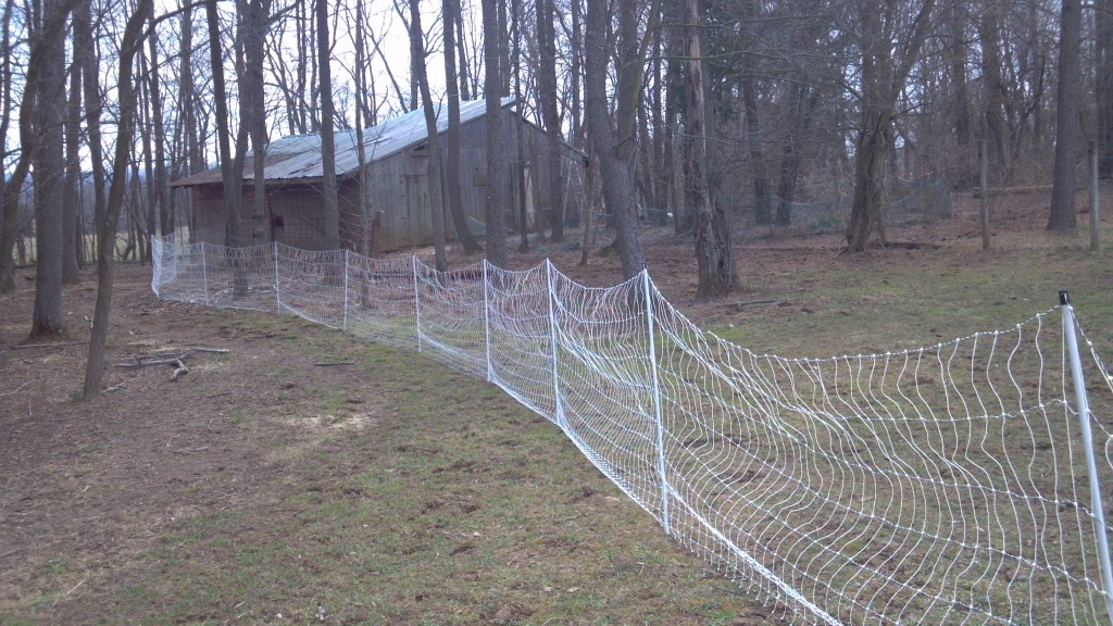 Woven, Electric Chicken/ Fox Fence