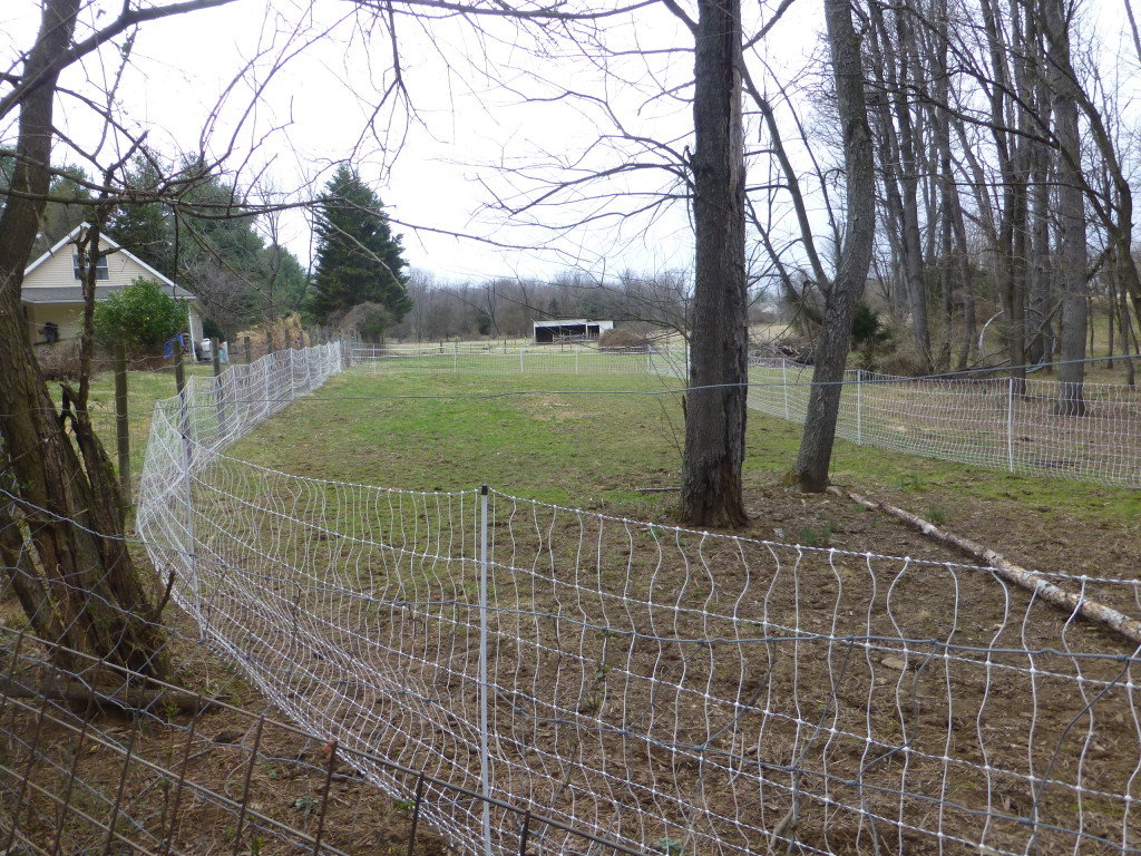 320 Feet of Electric Poultry Fence