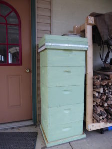 Hives Stacked for ParaMoth Treatment