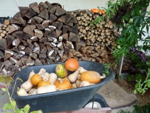 Pumpkins, Squash and Firewood