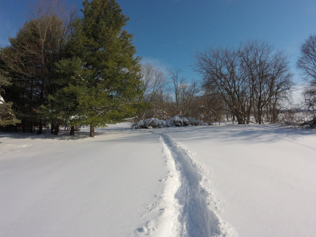 our driveway is two snowshoes wide