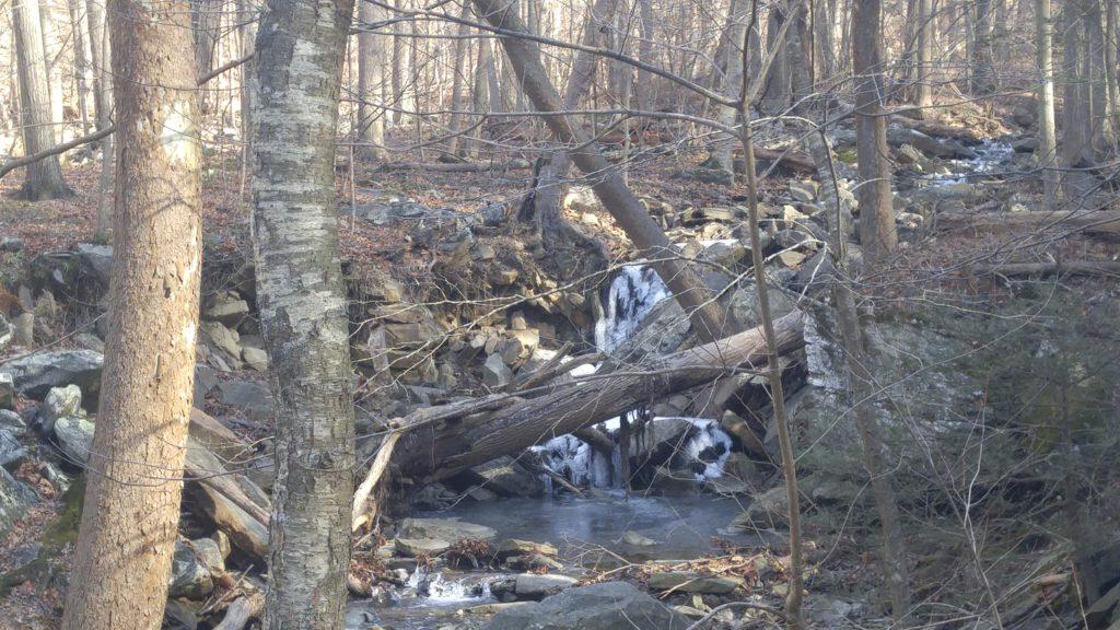 The Frozen Creek in Warner Hollow